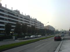 viale-monte-penice-02.png